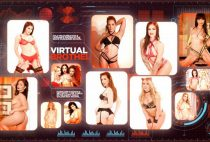 Virtual Brothel 2